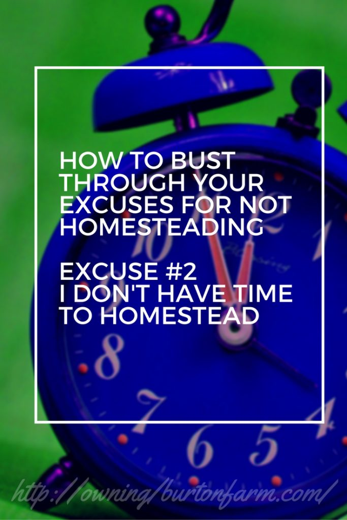PIN - Excuse 2 Homestead