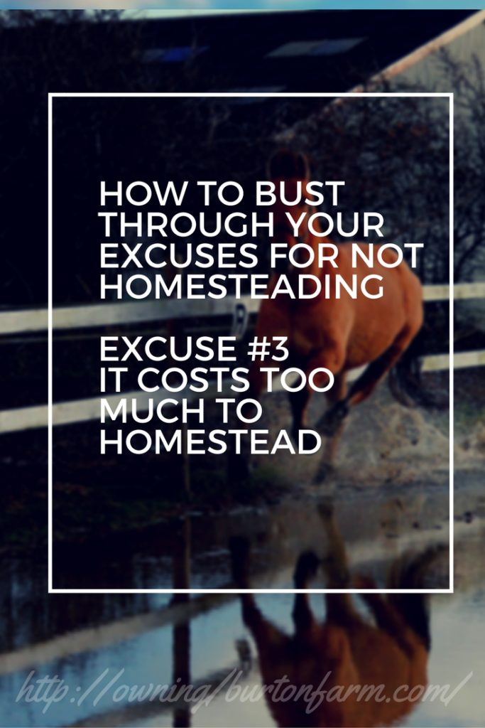 PIN - Excuse 3 Homestead