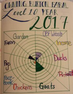 Bullet Journal Farm and Blog Level 10 Goals for the Year Owning Burton Farm - Join me for an update on our debt elimination progress and our goals progress for the year.