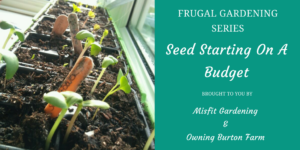 How to Find Seed-starting containers for free - Check out Owning Burton Farm and Misfit Gardening's Series on Frugal Gardening - Click now or save for later to learn how to start your seeds for free.