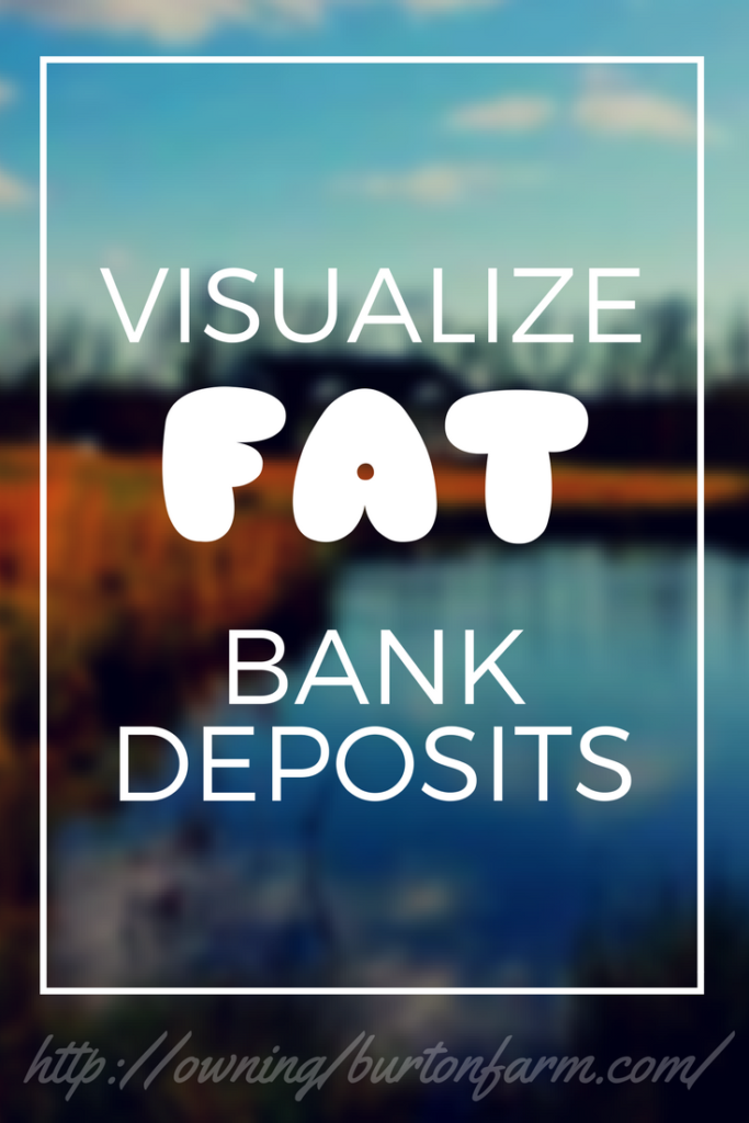 Visualize Fat Bank Deposits - The month I practiced this exercise, I brought in nearly $3,200 in unexpected funds.