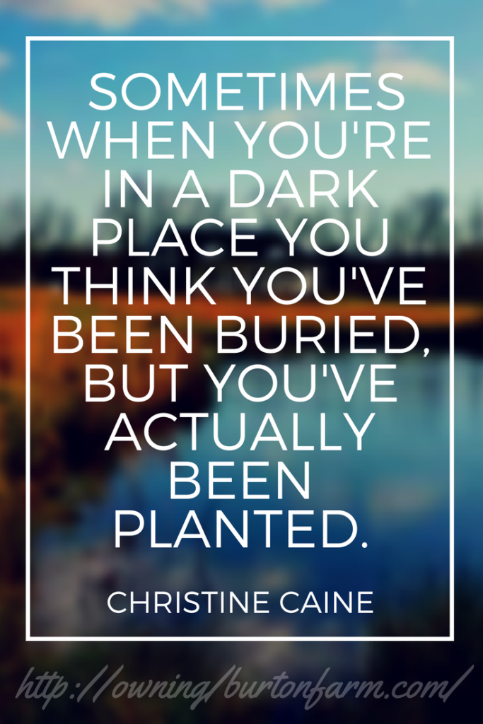 Christine Caine — 'Sometimes when you're in a dark place you think you've been buried, but you've actually been planted.' Our net worth and debt payoff update for May 31, 2017. See what's happening at owningburtonfarm.com by clicking through to read (we're considering a pool!), or save the pin to your quotes board.