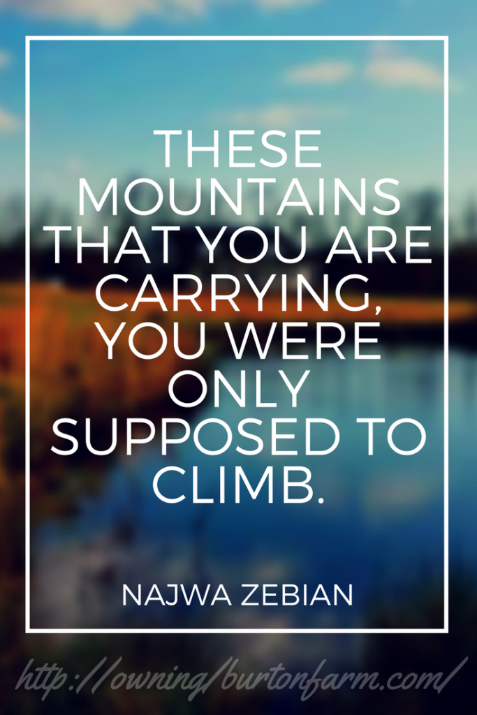 These Mountains that you are carrying, you were only supposed to climb - Najwa Zebian
