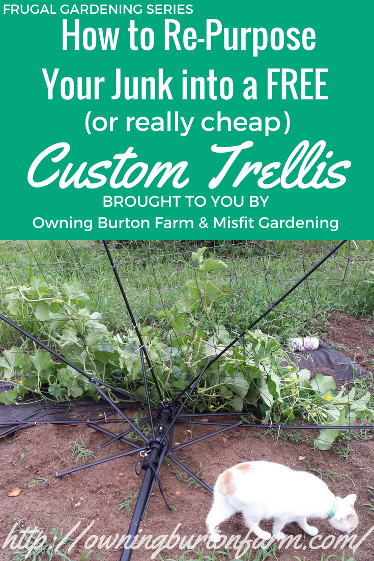 How to Re-Purpose Your Junk into a Custom Trellis - Owning Burton Farm